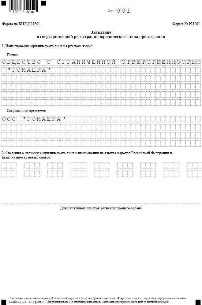Р11001 с одним учредителем - физлицом, страница 1